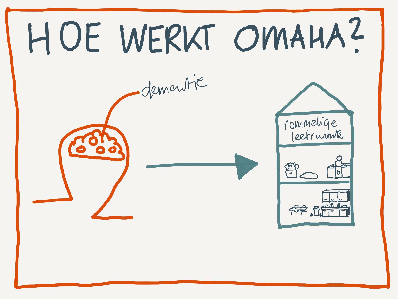 Hoe werkt Omaha System?