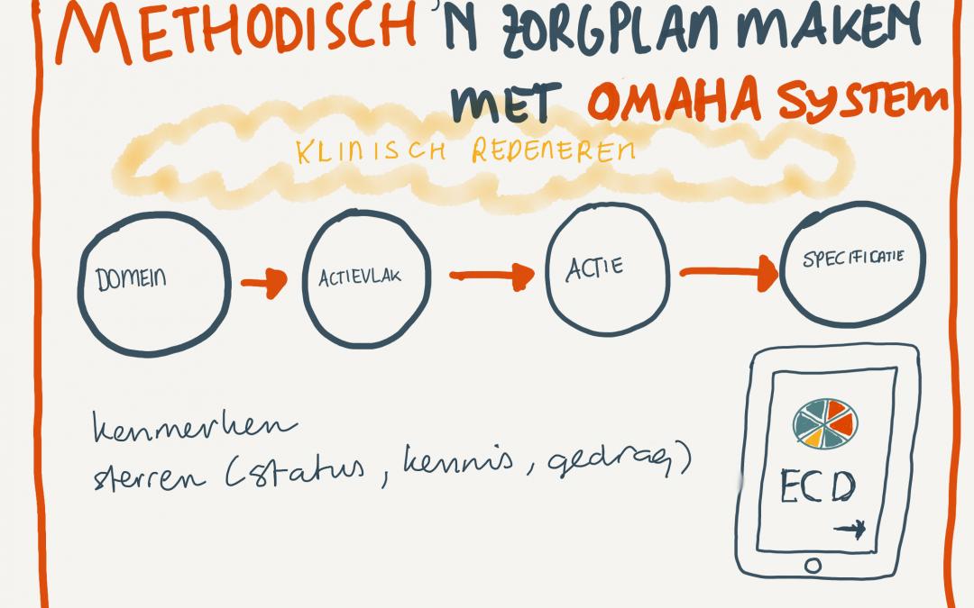 Methodisch een zorgplan maken met Omaha System